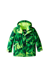 The North Face Kids - Darten Insulated Jacket (Little Kids/Big Kids)