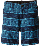 Quiksilver Kids - Open Amphibian Shorts (Toddler)