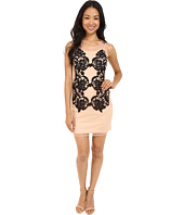 Brigitte Bailey - Vania Mesh Tank Dress with Lace Detail