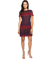 Maggy London - Tri-Color Lace Fit and Flare