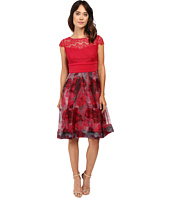 Sangria - Cap Sleeve Lace Bodice Knee Length Fit and Flare Dress