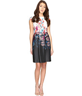 Adrianna Papell - Printed Scuba Fit and Flare