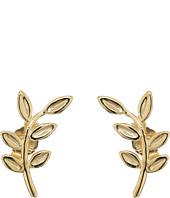 Dee Berkley - 14KT Yellow Gold Leaf Climber Earrings