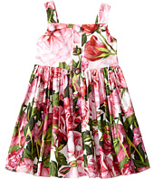 Dolce & Gabbana Kids - Rose Poplin Pleated Dress (Toddler/Little Kids)
