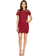 ROMEO & JULIET COUTURE - Short Sleeve Mesh Lace Dress