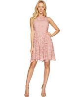 CeCe - Claiborne - Sleeveless Lace A-Line Dress