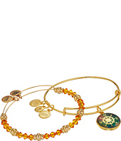 Alex and Ani - Art Infusion Bracelet Set, Compass